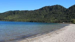 The Blue Lake #Rotorua