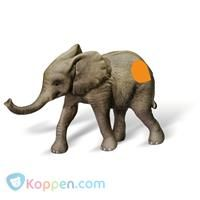 Figuur Tiptoi: Afrikaanse olifant kalf -  Koppen.com