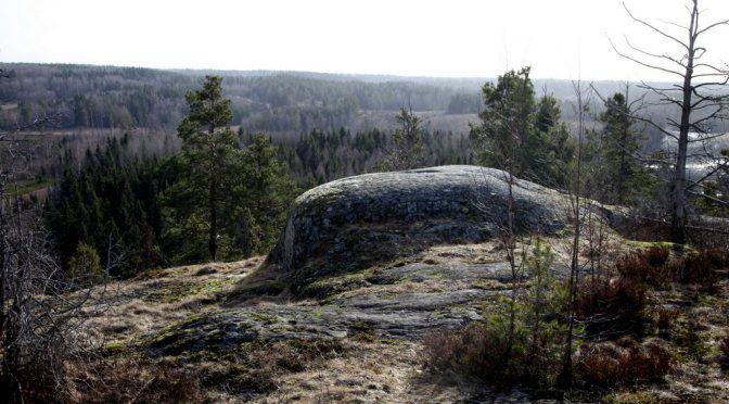 antinkallio (12)