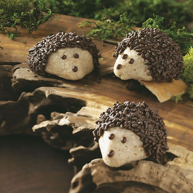 Chocolate-Pecan Hedgehog Cookies Recipe -Unlike the real woodland creatures, these chocolate-coated hedgehogs dwell on snack plates and cookie trays. The little guys are fun to make and eat. —Pamela Goodlet, Washington Island, WI