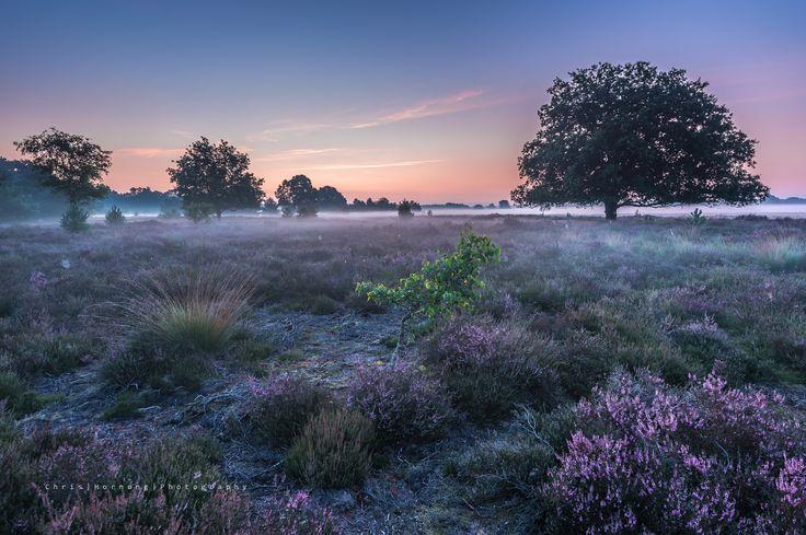 Fotograf 'a few moments earlier' von Chris Hornung auf 500px