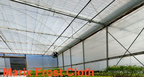 Marix-frost-cloth @Monbulk .. they also have flower mesh and other nursery stuff