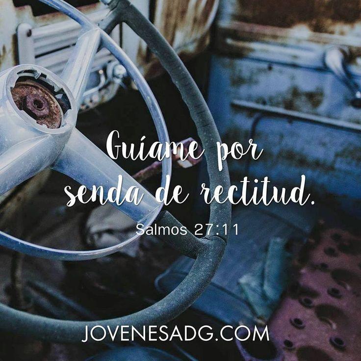 Salmos 27:11 que está suplica sea señor por mis hijos para que salgan victoriosos de este mundo de maldad