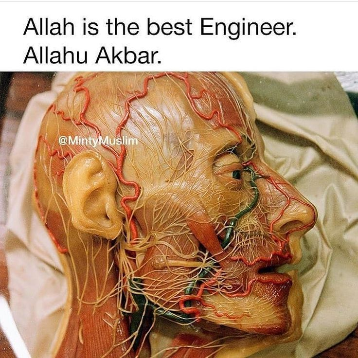 Allah Is The Most Powerful! Double Tap To FOLLOW ME soul