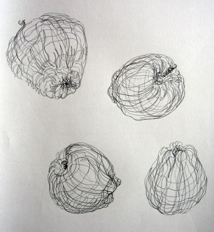 How To Do Contour Line Drawing : Best line drawings contour cross and blind