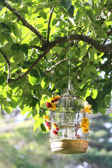 cageBirds Cages, Awww Outdoor, Trees Decor, Flower Gardens Birds, Birdcages, Cages Trees, Decor Photography, Outdoor Wedding Decorations, Outdoor Weddings