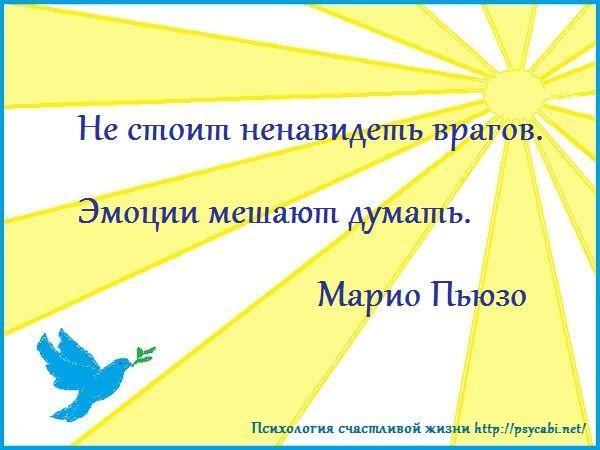 Не стоит ненавидеть врагов. эмоции мешают думать. Марио Пьюзо