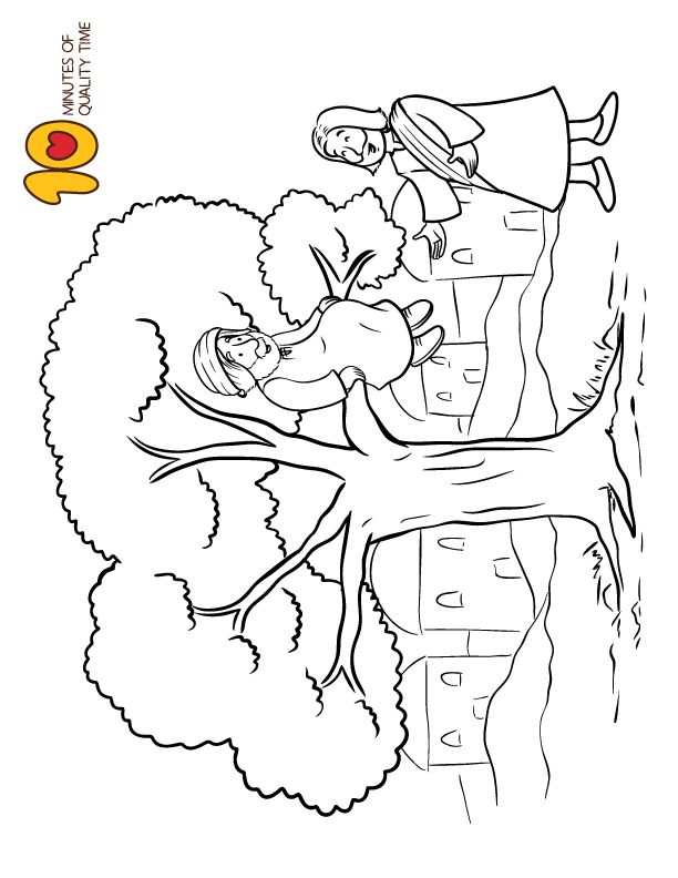 Zacchaeus Coloring Page in 2020 | Coloring pages
