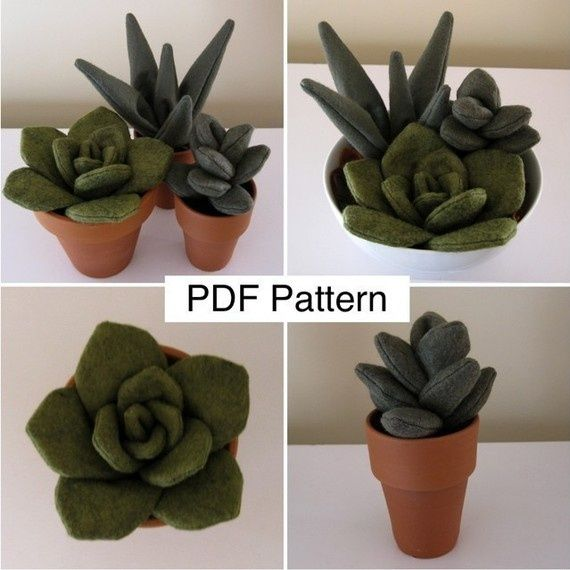 felt succulent patterns - Yahoo Image Search Results