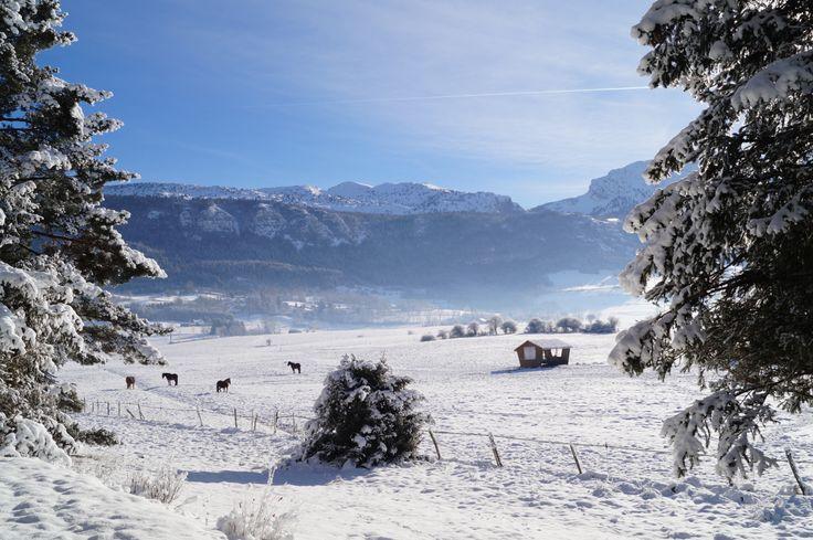 Plaine de Lans-en-Vercors Janvier 2014