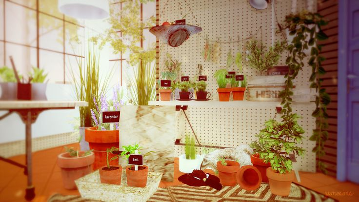 28 best sims 4 plants images on pinterest plants sims for Indoor gardening sims 4