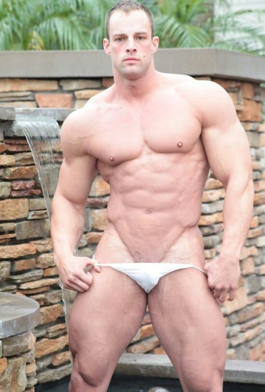 Bulge & muscle - Hot & Masculine | Body Building