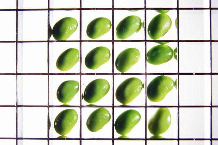 ¿Cuáles son los peligros del exceso de soja?. La soja se ha relacionado con una serie de beneficios para la salud, incluida la protección contra ciertos tipos de cáncer y los niveles de colesterol. Estos beneficios se han atribuido en gran parte a una sustancia en la soja conocida como isoflavonas. ...