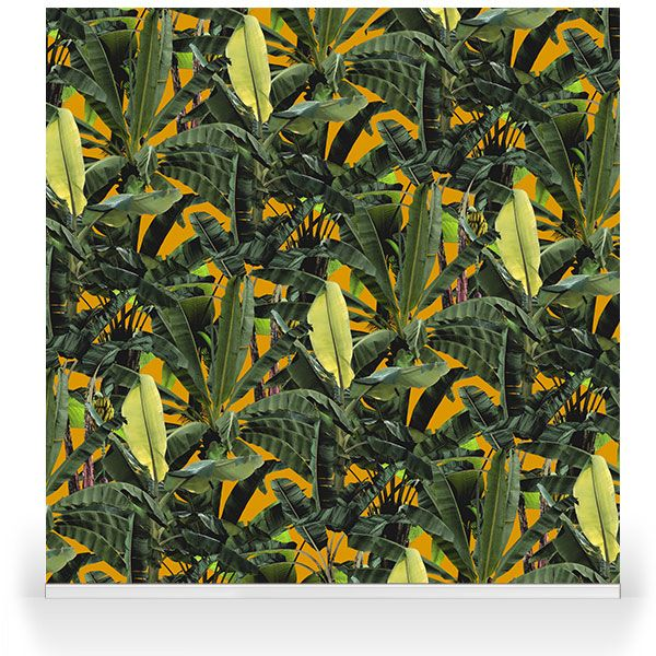 """""""Crazy Banana Sunset""""- A brand new range by our Senior Designer, Franco Moz. It encapsulates the strong botanical atmosphere of a summer paradise -and as a wallpaper or stretched canvas- is able to truly bring the outdoors into your modern day home decor."""
