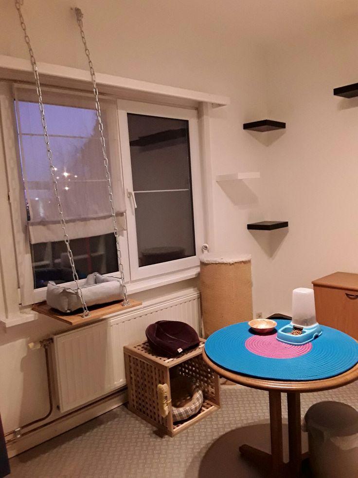 Mijn eigen kattenkamer - dank jullie voor de vele ideeën