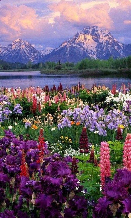 Best 25 nature ideas on pinterest places to go for Most beautiful places in america nature