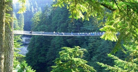 Capilano suspension bridgeCu un premiu de excelenta in Turismul National al Canadei, podul suspendat Capilani iti taie rasuflarea la o  inaltime de 230 feet deasupra raului Capilano, cu o lungime de 450 feet. Acesta se afla la 10 minute de centrul orasului.