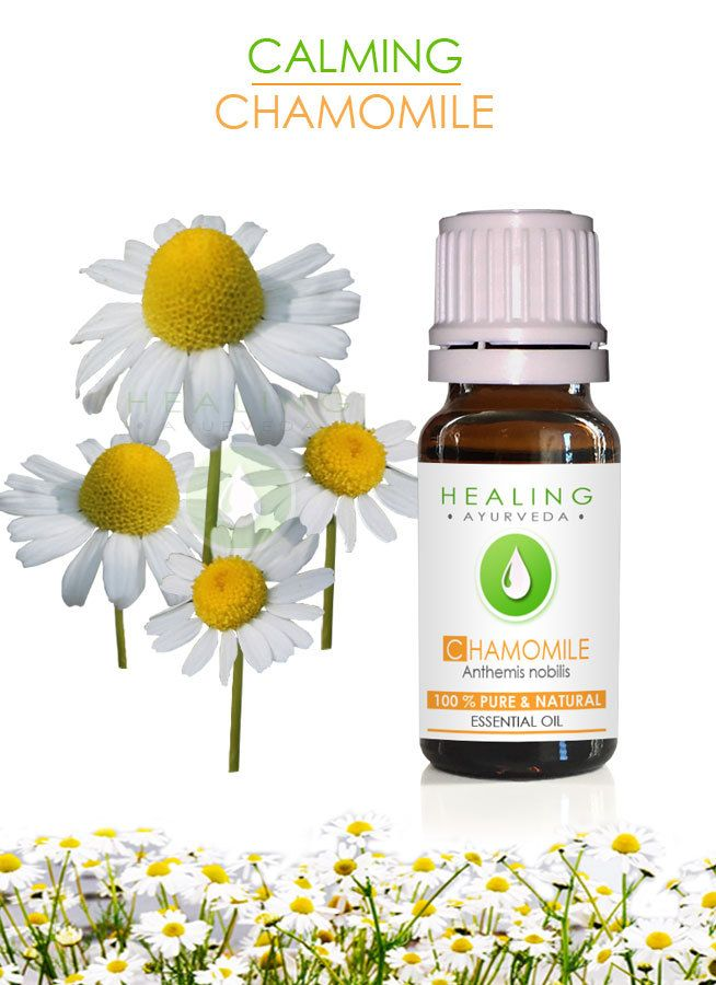 Chamomile essential oil- French- 100% Pure Chamomile oil- Ayurvedic essential oil- therapeutic Roman Chamomile- Aromatherapy Undiluted oil by FairOrganic on Etsy