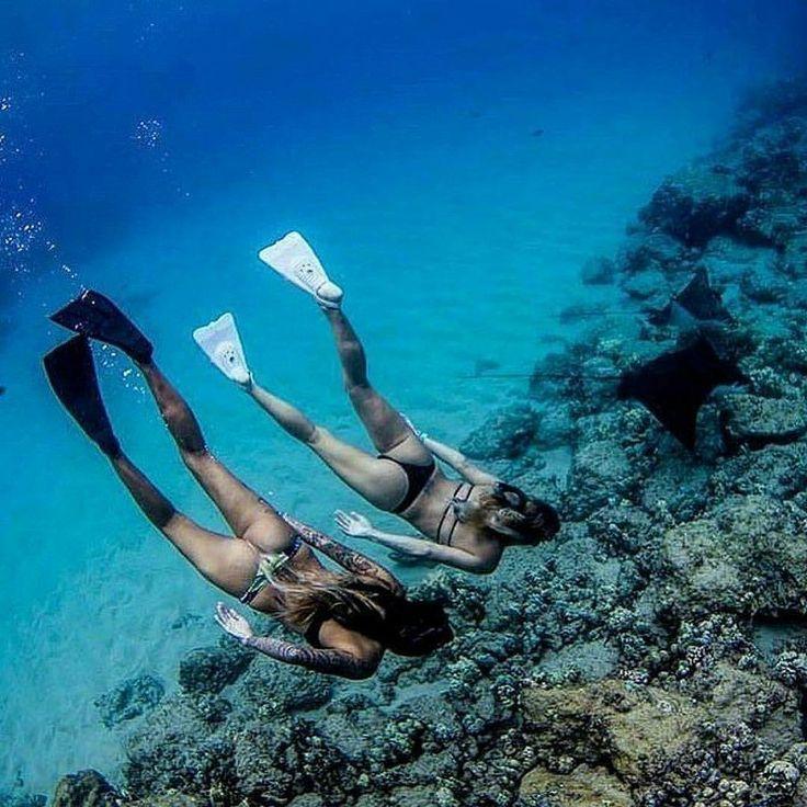 Diving Cabo San Lucas & Cabo Pulmo