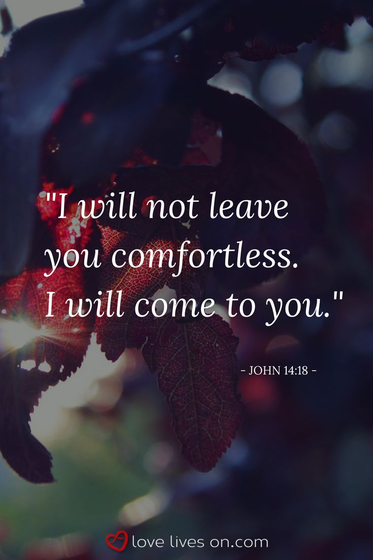 Bible verse for funerals from John 14:18. Click for 100+ more bible verses for funerals to find the perfect scripture.