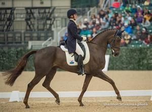 Arthur is King in Kentucky after Dressage (video) | Rate My Horse PRO