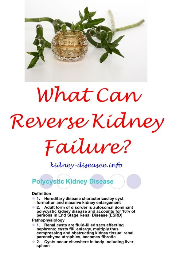 kidney infection in men - best drink for kidneys.what causes kidney disease in adults 2694564075