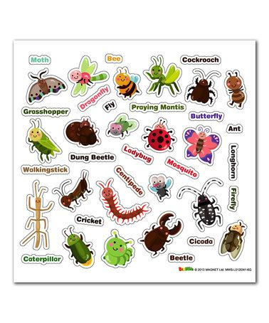 146 best images about insects preschool theme on pinterest garden butterfly animals insects wall art sticker wall art