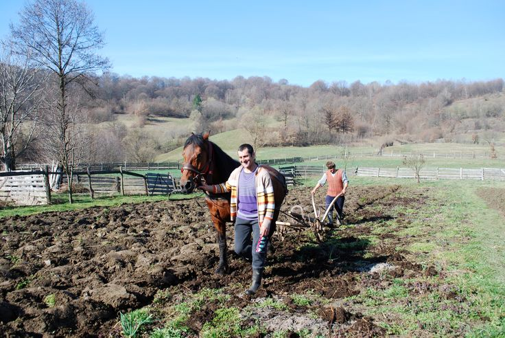 working the land in spring