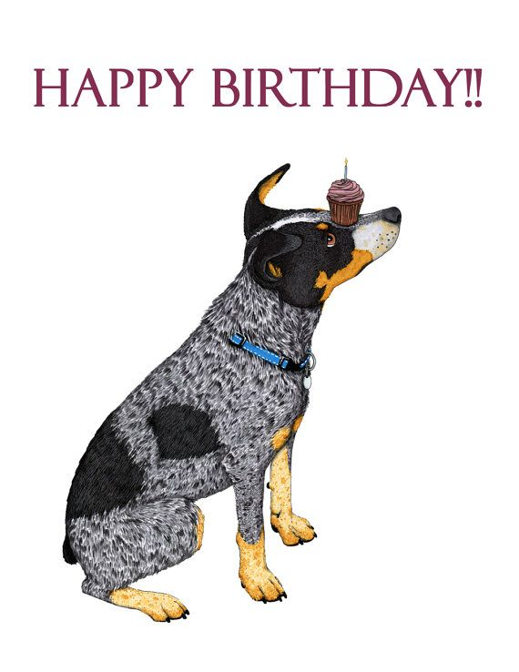 17 Best ideas about Personalized Birthday Cards – Birthday Card Delivery Australia