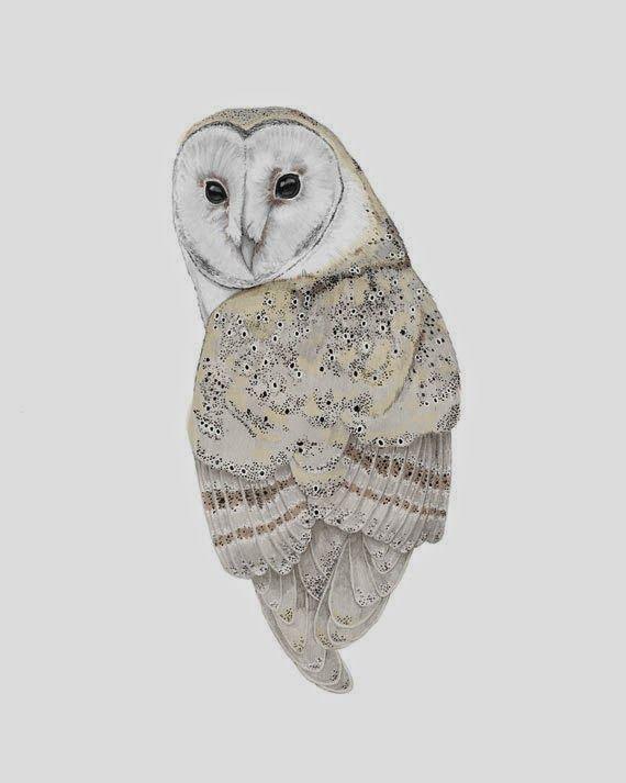 Tyto Alba A4 Fine Art Print by Beth Emily