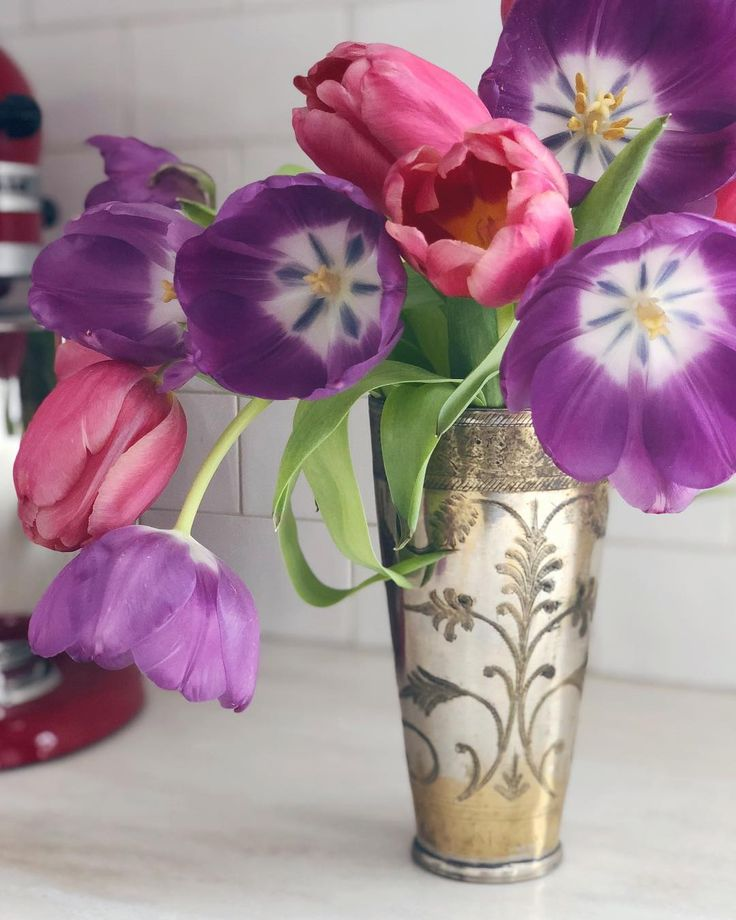 #tulips in an #Indian #lassi cup, photo by Grace Naumann