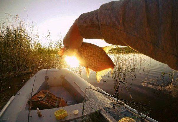 Хитрости успешной рыбалки для начинающих    Рыболов, готовясь к выходу на воду, оценивает погодные условия, подбирает снасти и насадку с учетом вкусов объектов ловли и особенностей водоема. Успех рыбалки зависит в первую очередь от знаний и опыта рыболова, в котором не последнюю роль играют различного рода маленькие хитрости.    Я предпочитаю ловить подлещика на поплавочную удочку. Поклевка его необычная. На ваших глазах поплавок то медленно, то сразу поднимается из воды и падает, как…