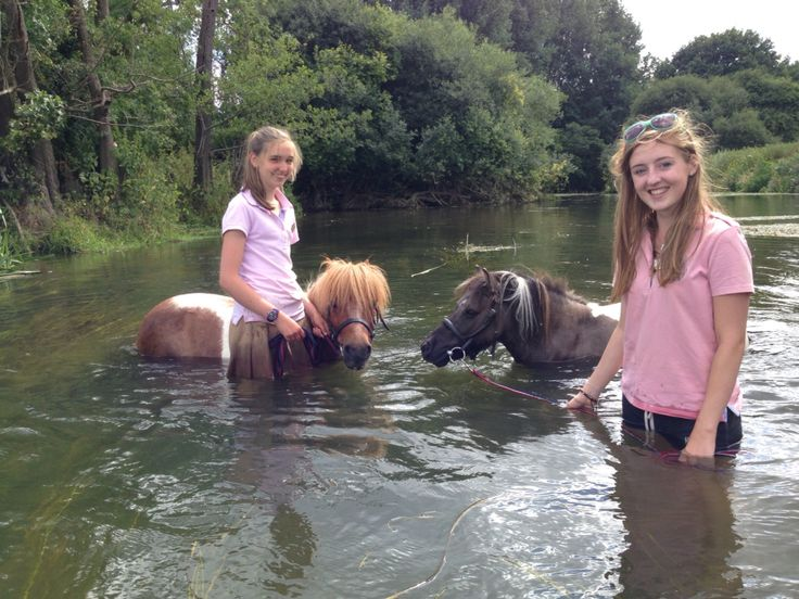 Pony swimming! Robinhood and Nottingham go in the river!