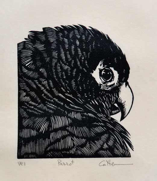 Linocut Parrot Handpulled Relief Print by Diane Cutter by DCutter, $35.00