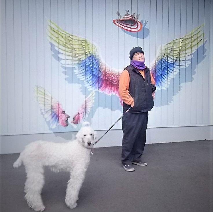 今まで見過ごしていたメイカーズピアのインスタ映えスポット👼です。たまにはね(笑) #angel #天使の羽 #インスタ映え? #メイカーズピア #cute #犬のいる生活 #dog #poodle #スタンプー #シニアドッグ #似合う? #インスタ映え #もうすぐ春