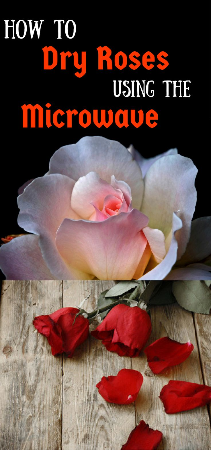 How to Dry Roses Using the Microwave - Pin this image so you can refer to it later