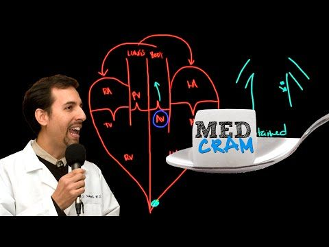 Aortic Stenosis Explained Clearly - YouTube