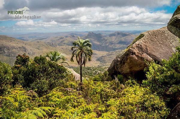 Andringitra Nationalpark Madagaskar.