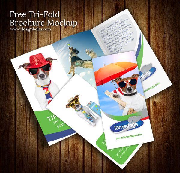 http://www.designbolts.com/2013/01/02/free-tri-fold-brochure-mockup-psd-template/
