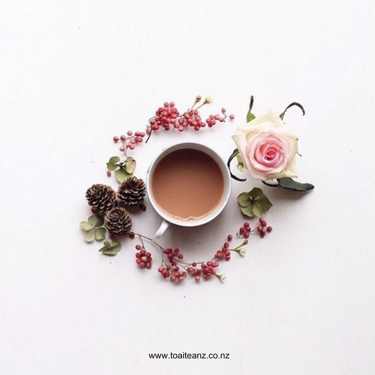 """Enjoy Toai Tea's """"Caramel Latte"""" - Creamy maple with winter nuts blend together to create a sweet treat - works well with milk  ^SK www.toaiteanz.co.nz"""