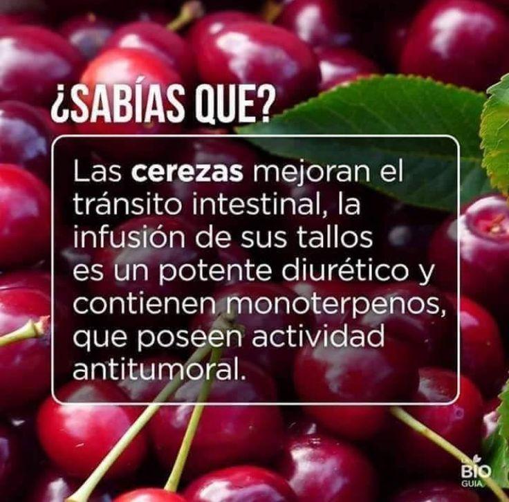 alimentos naturales para eliminar el acido urico plantas medicinales contra el acido urico alto frutas q producen acido urico