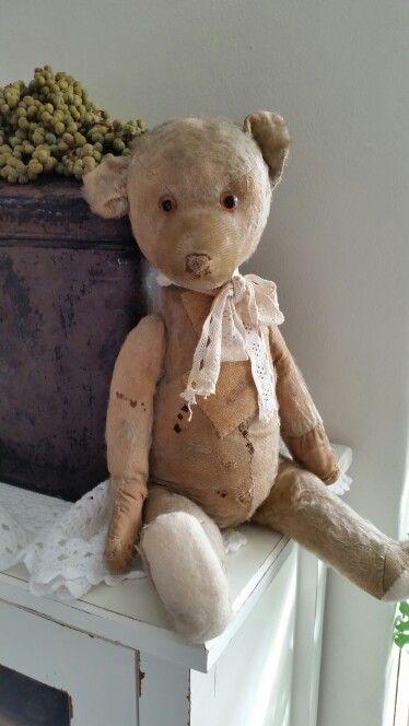 Old Teddy: