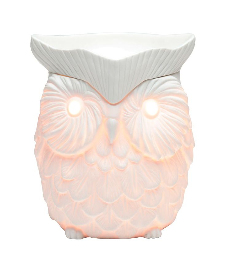 Whoot- beautifully hand etched design £39