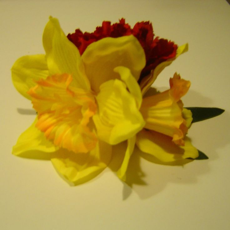 Daphne's Daffodil's - Red Carnation