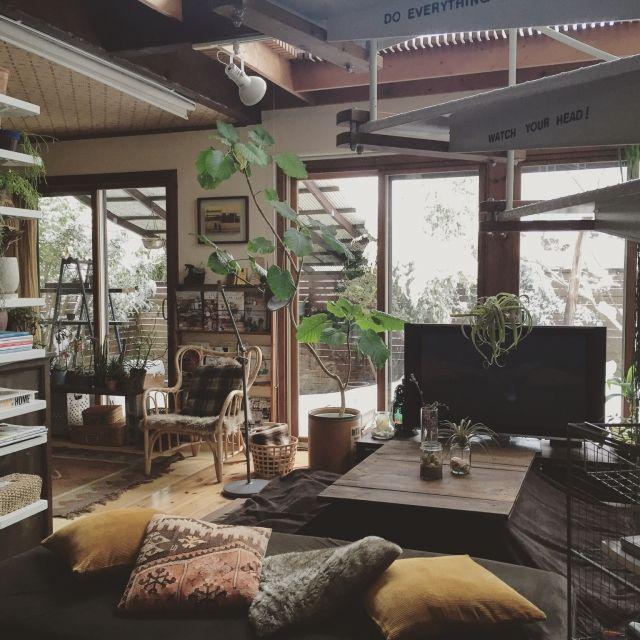 yururi-8239223さんの、雪,オールドキリム,ムートン,ラタンチェア,ウンベラータ,DIY机,IKEA,IKEAの棚,窓辺の風景,窓辺,クッションカバー,ニトリのクッションカバー,サボテン,テラリウム,NO GREEN NO LIFE,なんちゃってこたつ,テレビ,Lounge,のお部屋写真