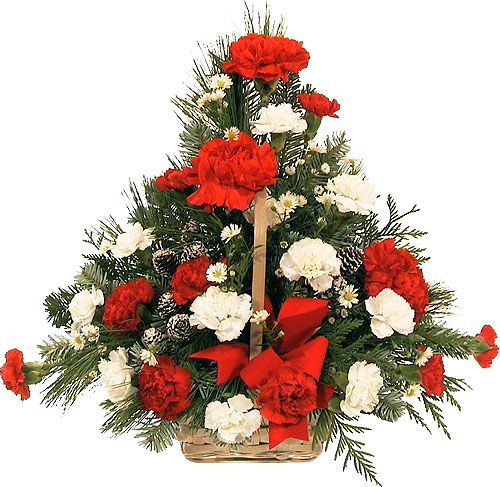 Fresh Christmas Wreaths Delivered