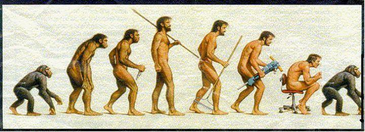 5. Эволюция - это всегда улучшение