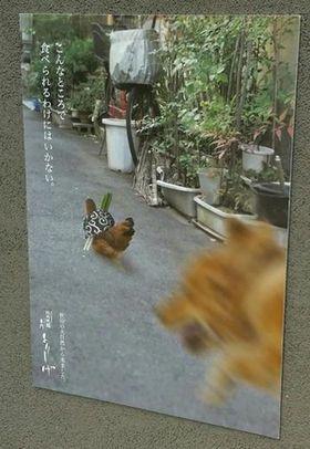 """焼き鳥への覚悟を決めた?""""比内鶏ポスター""""が切なすぎ(ノД`) - NAVER まとめ"""