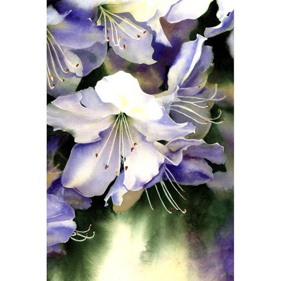 Watercolor Azaleas Print  White Flowers Painting  8 by AlisaPaints, $30.00