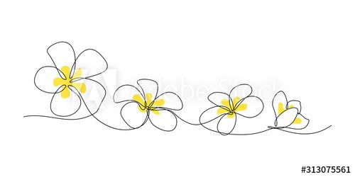 Plumeria Flowers In Continuous Line Art Drawing Style Minimalist Black Line Sketch On White Background Vector Ill In 2020 Line Art Flowers Line Art Line Art Drawings